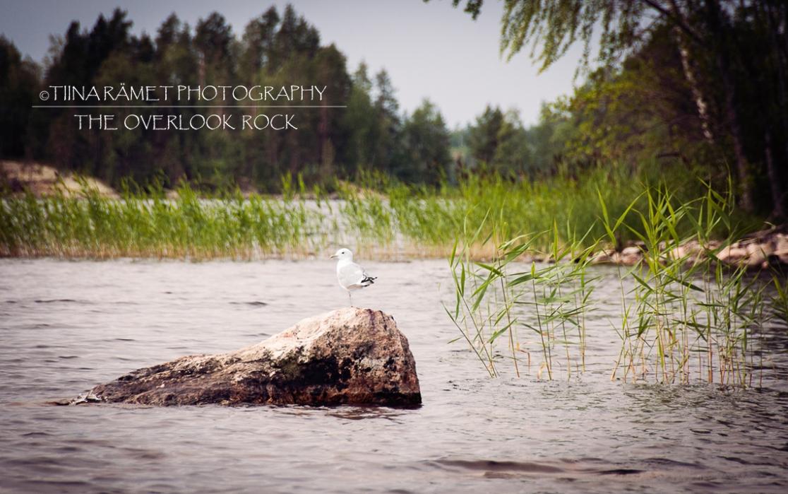 The overlook rock